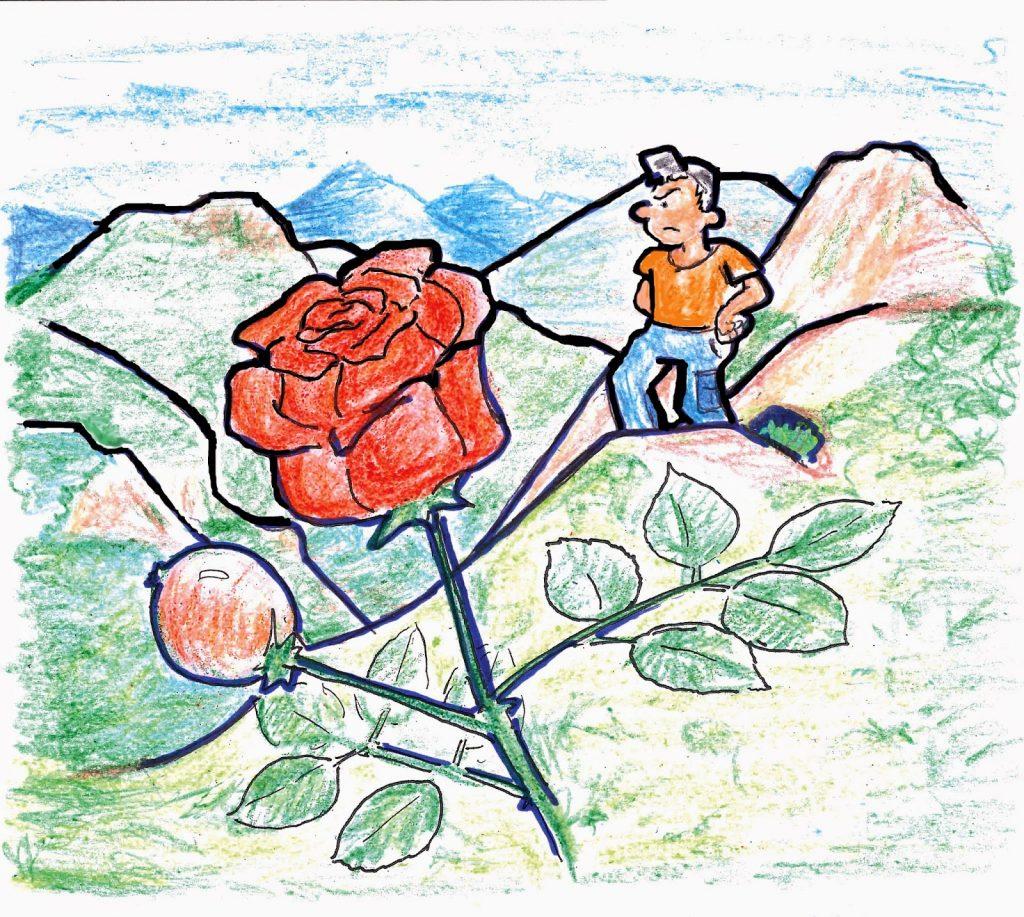Ilustración de Juan Francisco Miral