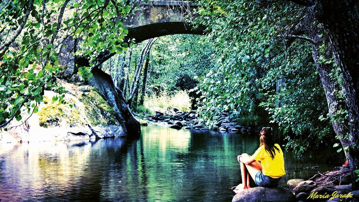 Contemplar la Naturaleza
