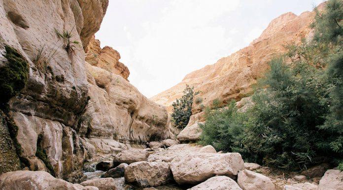 Ein Gedi, Israel. foto: Rob Bye
