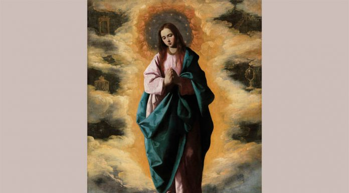 La Inmaculada Concepción de Zurbarán. Museo del Prado.