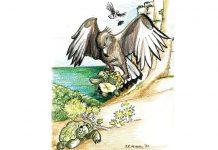 El águila y la tortuga. Ilustración: Juan Francisco Miral